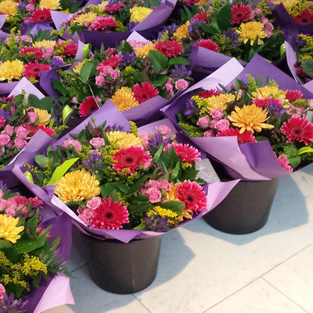 Bloemen AVROTROS